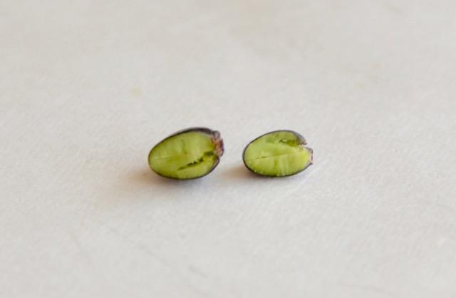 黒千石豆の栄養