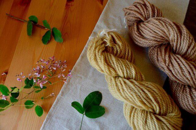 萩染めの毛糸と萩の花