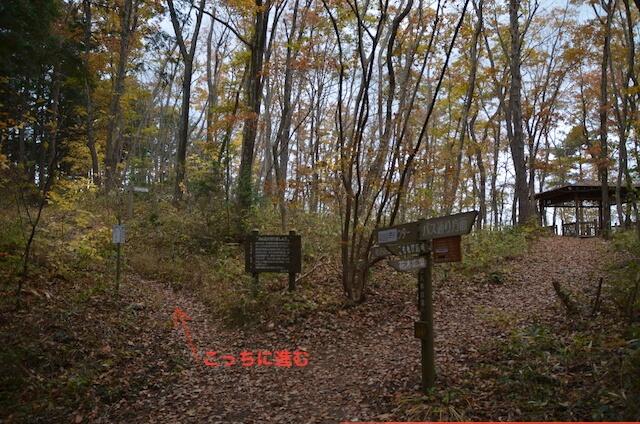 化石の森道順2