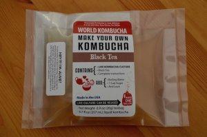 kombucha 種菌