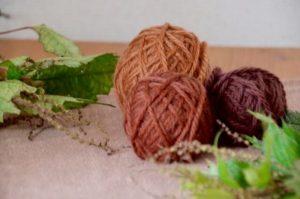 アカソ染めの毛糸とアカソ(植物)が机の上に飾られている